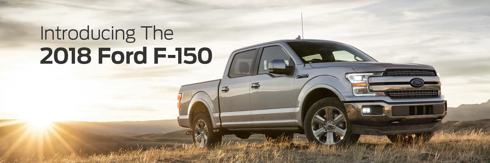 View our new Ford F-150 inventory