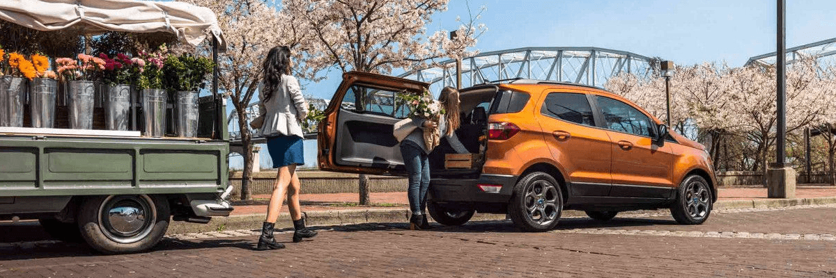 2018 Ford EcoSport rear swing gate