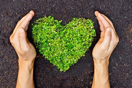 Green heart made of plants symbolizing Toyota's dedication to lowering emissions and protecting the environment.