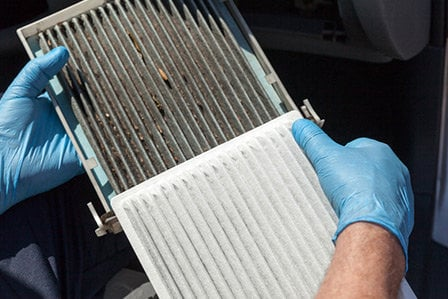 Dirty cabin air filter from Toyota on Long Island, NY.
