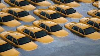 Taxis underwater as a result of Super Storm Sandy in New Jersey.