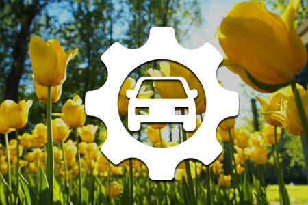 Coupon for Spring Service Special $185.99