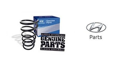 Hyundai Genuine Parts Long Island