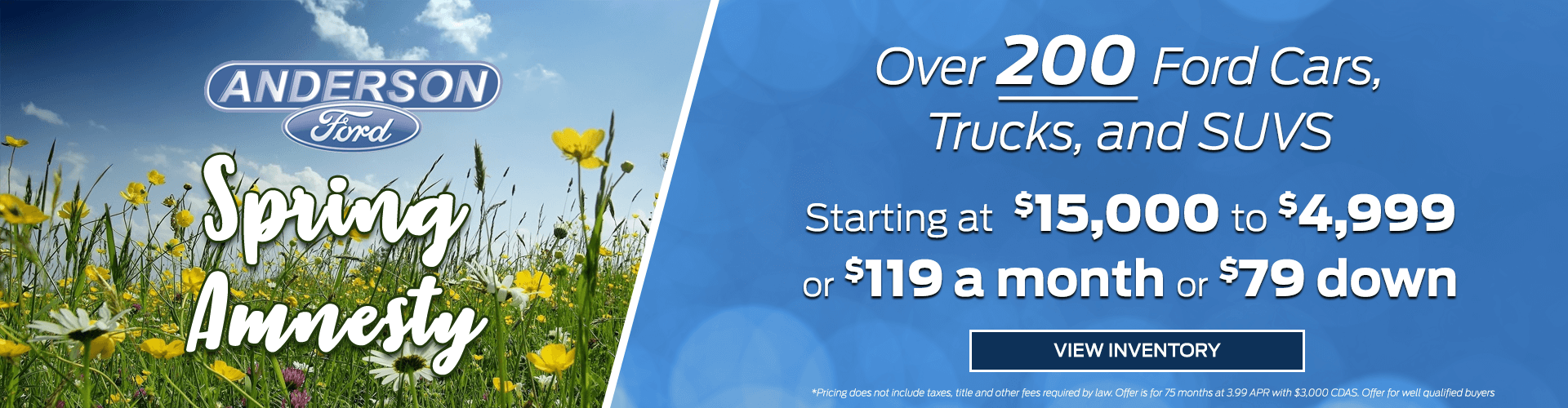 Anderson Ford Spring Amnesty