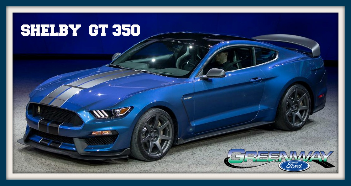 Thumbnail Of The  Ford Shelby Gt  Mustang