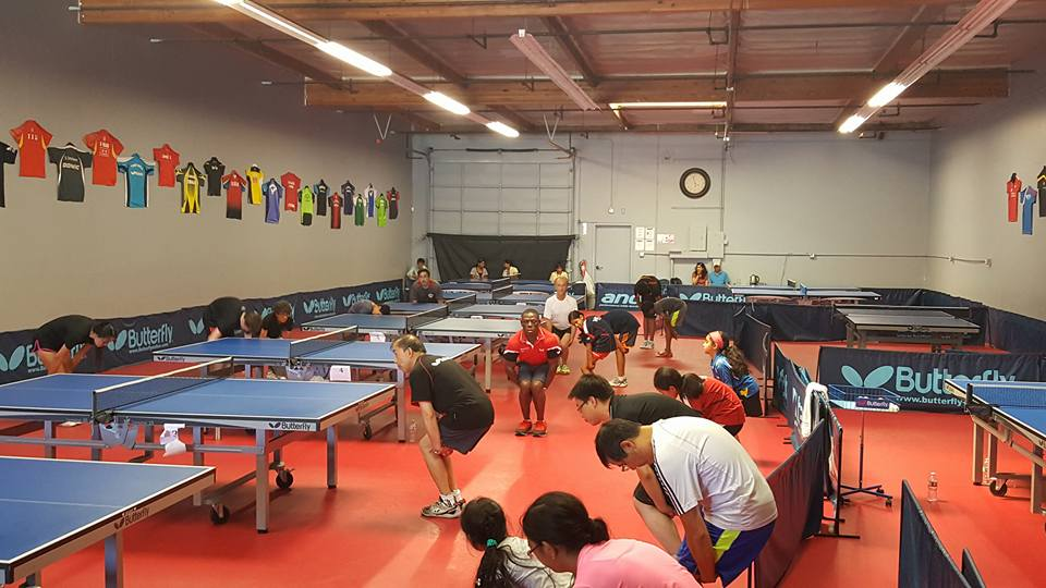 Powerstroke Bozard Table Tennis Club