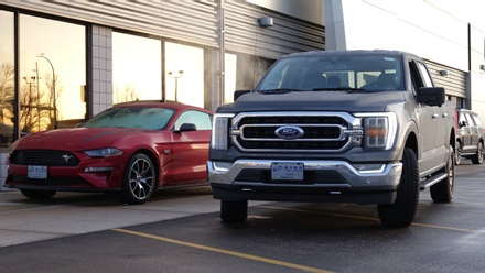 New Fords in Bismarck