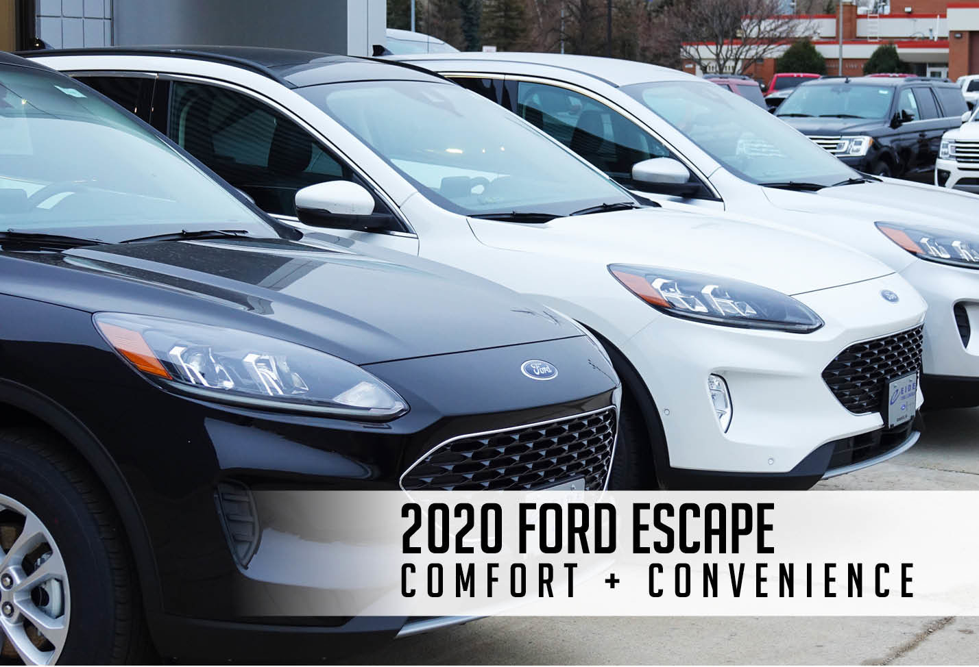 Get to know the new Escape at Eide Ford