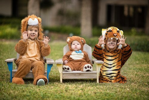 Three children in animal costumes who are ready for trick-or-treating this Halloween.