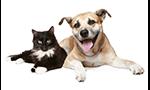 Animal Lovers Package